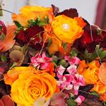 Blumenstube